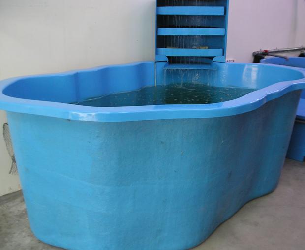Aquaculture frp tanks for Aquaculture fish tanks
